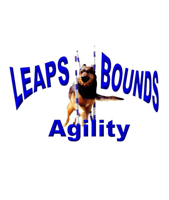 Leaps N Bounds